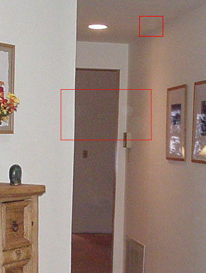 Chicago, Illinois ghost picture.